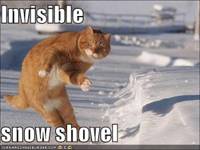 funny pictures cat with invisible snow shovel HR and Business: How Do You Handle Snow and Work